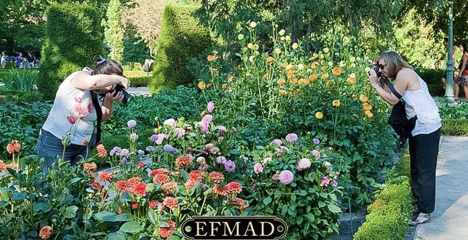 fotografia curso botanico quedada madrid escuela efmad