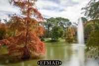 rutas de fotografía por madrid escuela efmad