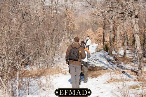 2015-01-25 quedada-rascafria-nieve 010