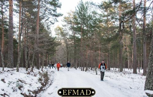 2015-01-25 quedada-rascafria-nieve 029