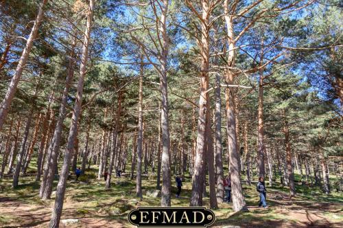 canencia ruta fotografica efmad-02