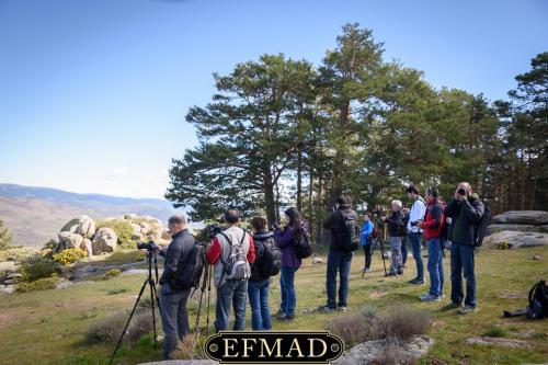 canencia ruta fotografica efmad-07