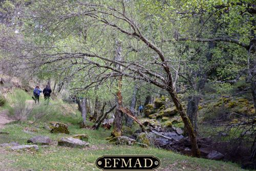 canencia ruta fotografica efmad-17