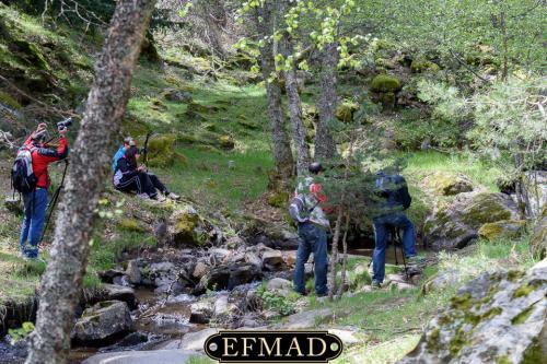 canencia ruta fotografica efmad-22