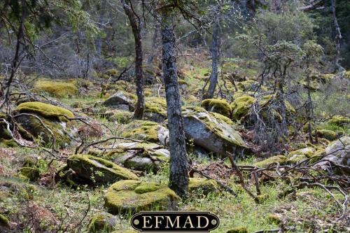 canencia ruta fotografica efmad-25