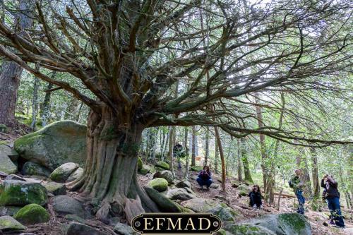 canencia ruta fotografica efmad-26