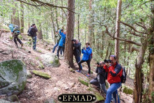 canencia ruta fotografica efmad-27