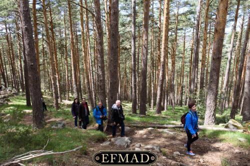 canencia ruta fotografica efmad-28