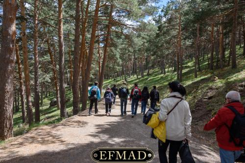 canencia ruta fotografica efmad-30