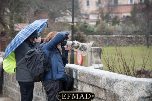 quedadas fotograficas EFMAD Madrid