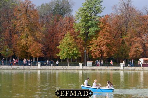salidas fotograficas madrid retiro EFMAD-13