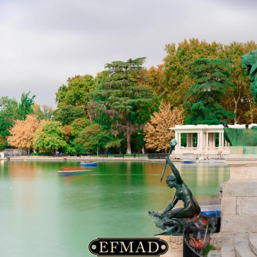 salidas fotograficas madrid retiro EFMAD-16