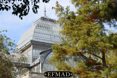 salidas fotograficas madrid retiro EFMAD-19