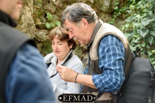 salidas fotograficas madrid retiro EFMAD-22