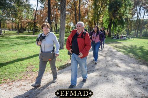 salidas fotograficas madrid retiro EFMAD-23