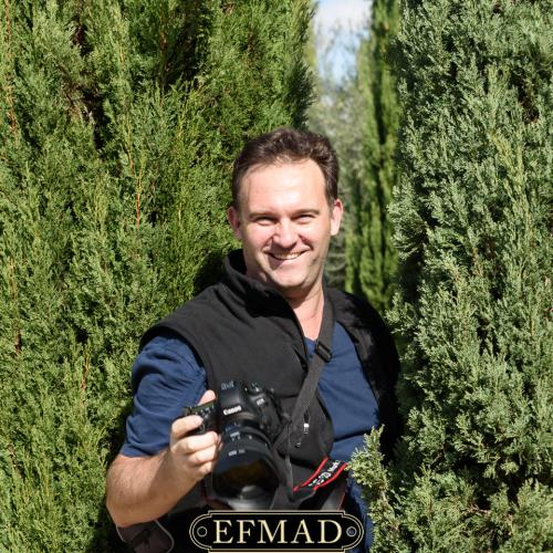 salidas fotograficas madrid retiro EFMAD-24
