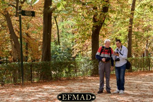 salidas fotograficas madrid retiro EFMAD-25