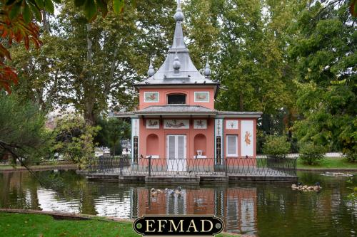 salidas fotograficas madrid retiro EFMAD-3